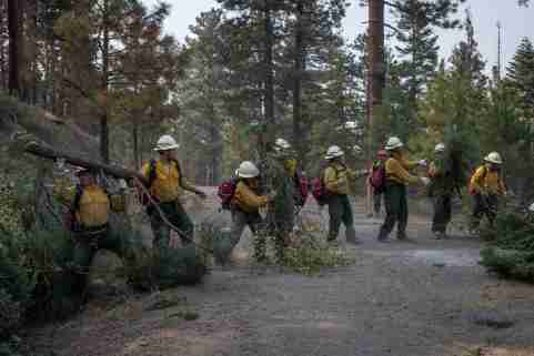 Firefighters from Mexico and Honduras cut and move branches in the Fremont National Forest while prepping the fire line ahead of the Brattain Fire in the outskirts of Paisley, Oregon, U.S., September 17, 2020. REUTERS/Adrees Latif
