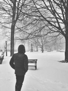 stephen bw blizzard