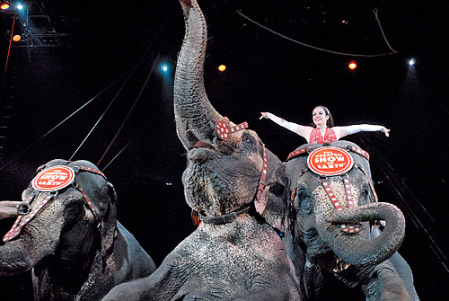 Revival tent Ringling Brothers circus to return to Coney