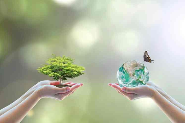 تعريف البيئة وشرح العوامل التي تؤدي الي احداث تغيرات في البيئة -  الصف الثالث