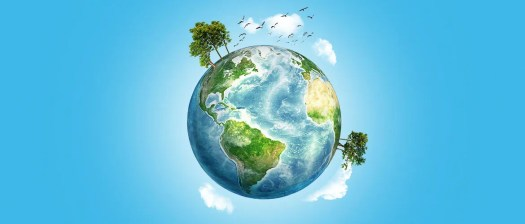 Top 10 environmental tips | Blog | Brother