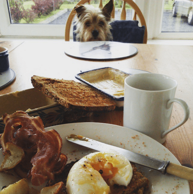 Year of Food NI-Breakfast Month-Our Favourite Breakfasts