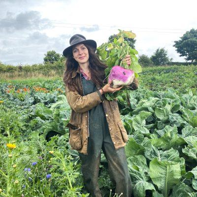 vegetable gardening class northern ireland veg box ballycastle