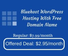 Bluehost WordPress Hosting With Free Domain Name