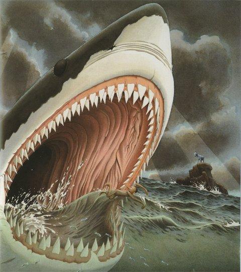 Innocentis Shark