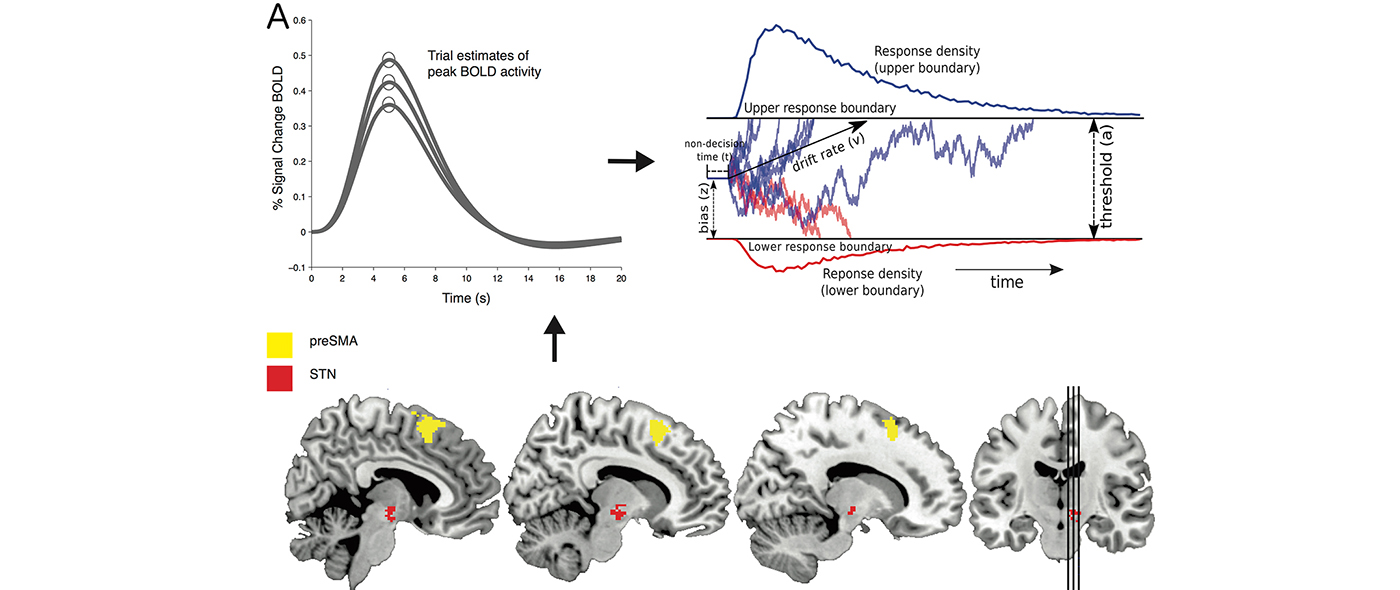 Computational Psychiatry: Combining Theory-Driven and Data