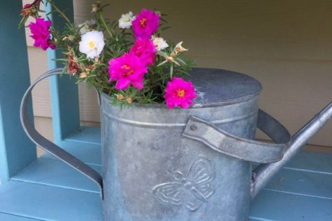 DIY Planter from vintage watering can