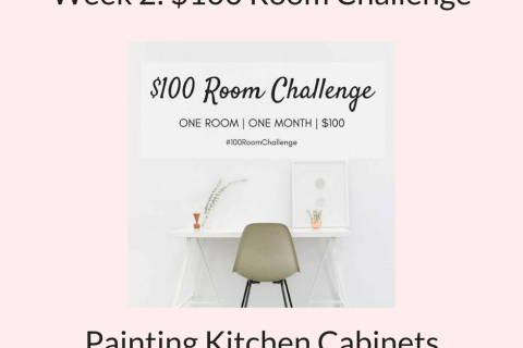 Week 2 one hundred dollar kitchen makeover