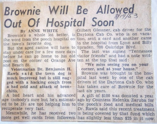 August 19, 1953: Brownie will be Allowed out of Hospital Soon - Daytona Beach News Journal