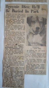Brownie the Town Dog of Daytona Beach's obituary appears in the News Journal on November 1, 1954.