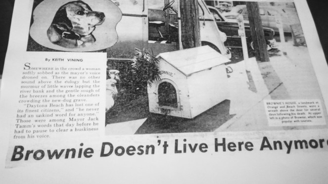 All Florida Magazine 1955 - Brownie Doesn't live here anymore