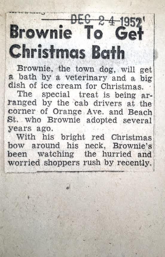 Brownie gets Christmas Bath