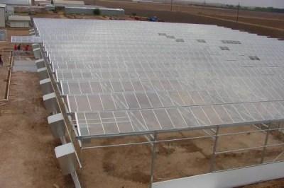 greenhouse_texas3