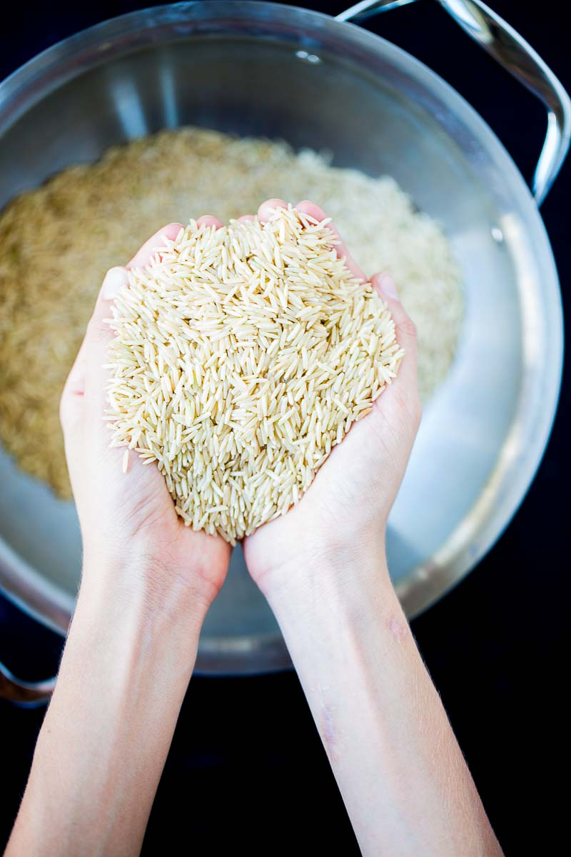 two hand holding uncooked rice