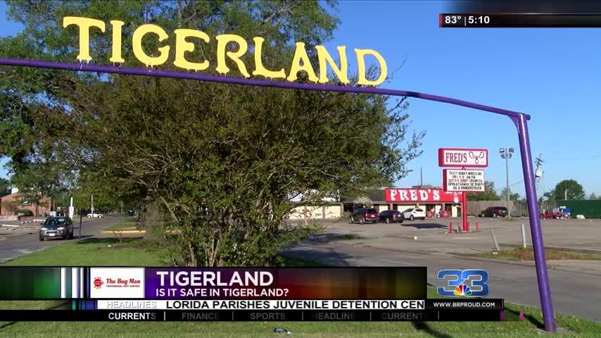 How Safe is Tigerland-_81330995-159532