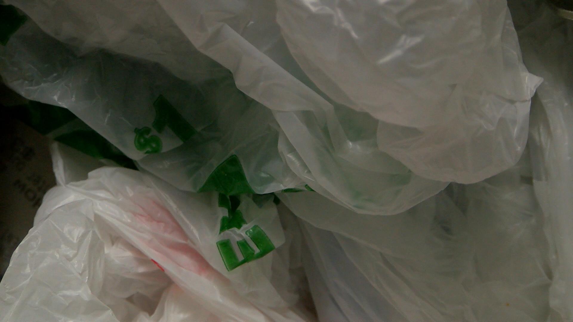 plastic bag 3_1461362265654.jpg