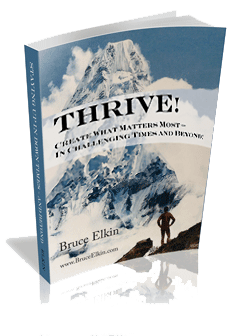 Thrive! Creating what matters most, by Bruce Elkin.