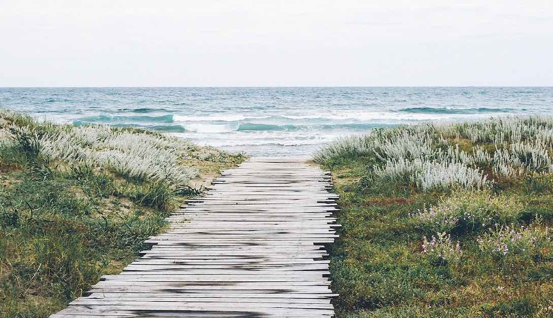 A good enough walkway made of wooden planks and slats cuts through sea side vegetation to the beach