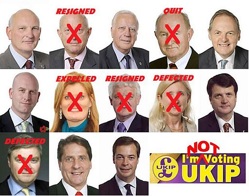 Problems with UKIP politicians