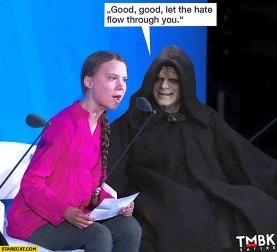 Greta Thunberg, The Memes