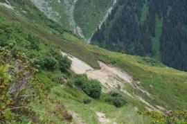 Der Trail zum Bostg