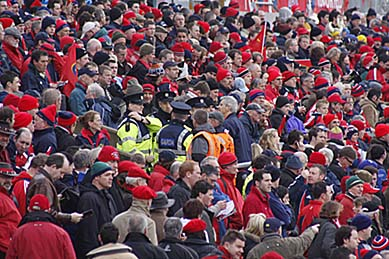Thomond Park Crowd