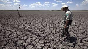 Burgemeesters en klimaat
