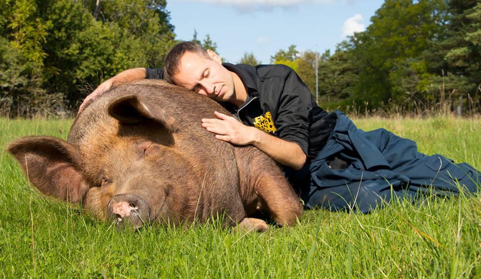 Een hele dag rond dierenrechten en activisme