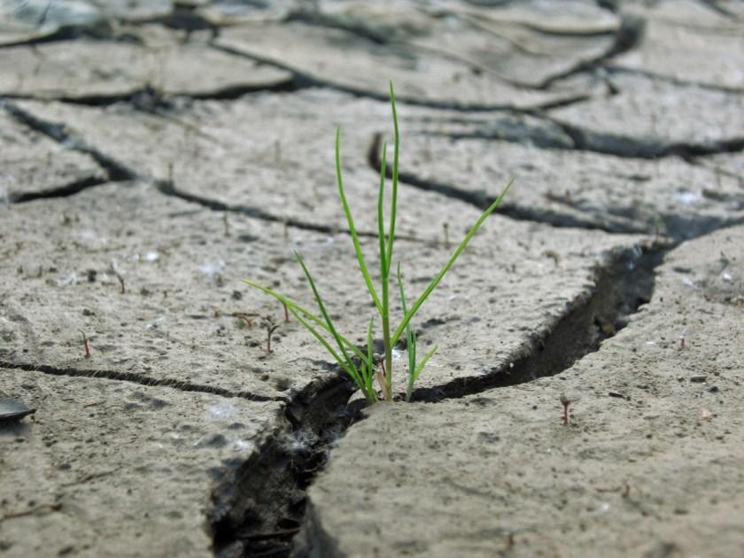 Als het water niet meer uit de kraan komt… is het tijd om minder te gaan doen! Daarom is dit artikel slechts voor 2/3 af.