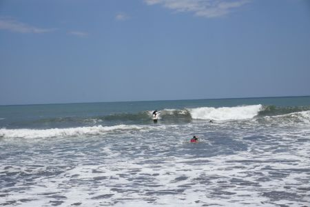 I'm Gone Surfinnn