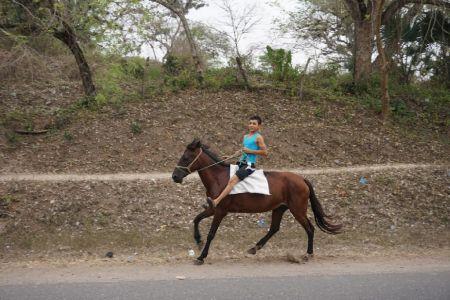 Paardrijden local style