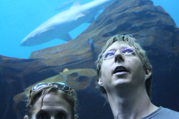 Andy looks up in the aquarium tunnel