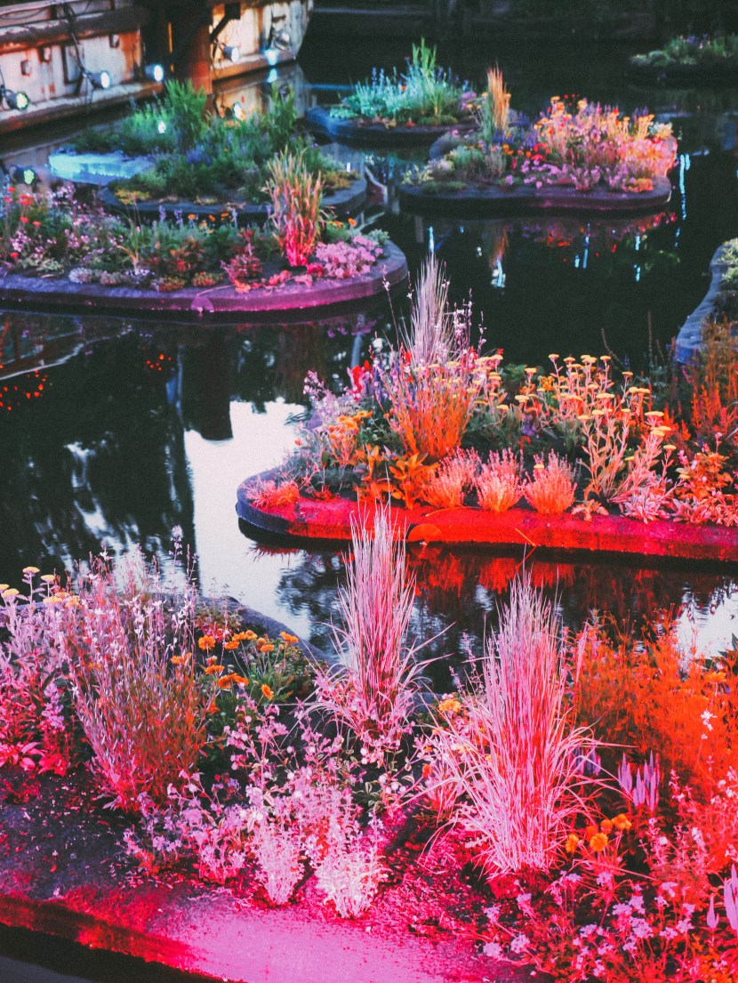 floating garden at waterfront sessions, spruce street harbor park, philly | brunch at audrey's