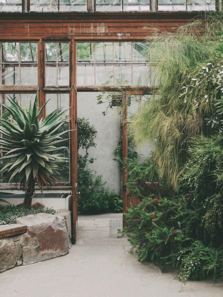 greenhouse - cambridge university botanic garden | brunch at audrey's