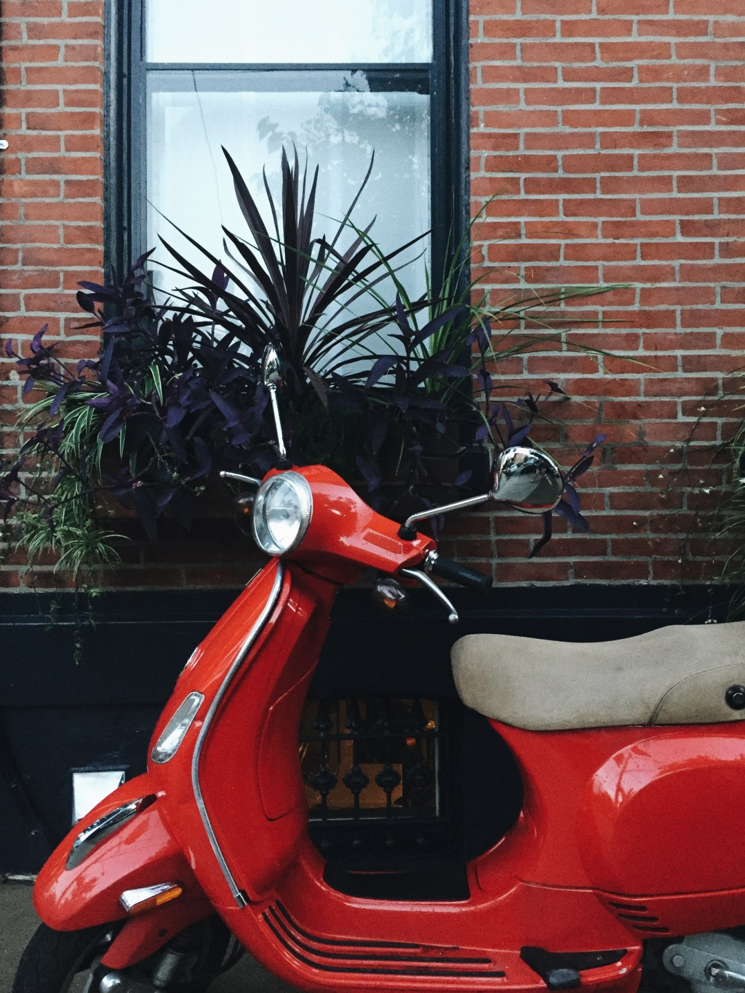 moped, philly - august lately | brunch at audrey's