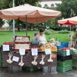 Dočasné zelné trhy