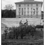 Pražákův palác