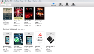 Best Seller in Ibooks Store