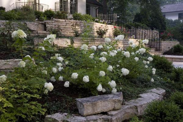 glen ellyn landscape design - bruss