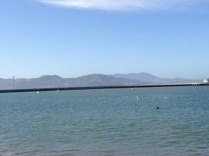 The Bay in San Fran.