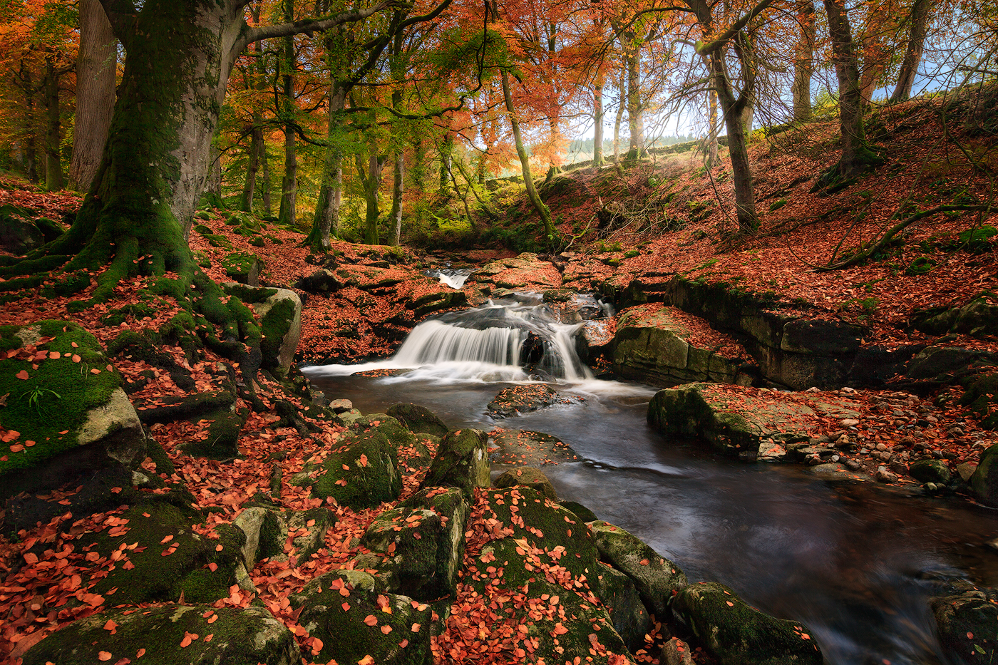 Ireland In The Fall Wallpaper Autumn In County Wicklow Bryan Hanna Irish Landscape