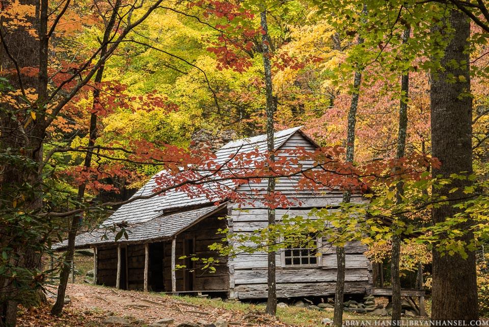 Fall Foliage Smoky Mountains 2020.Great Smoky Mountains Fall Photography Workshop