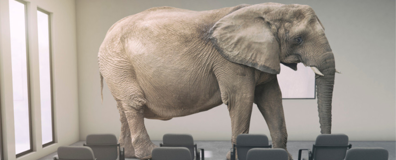 address the elephant in the room