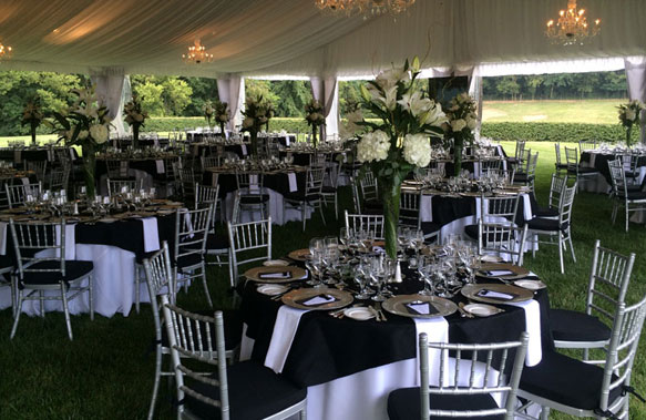 wedding chair rentals purple arm bryant s rent all equipment party in lexington