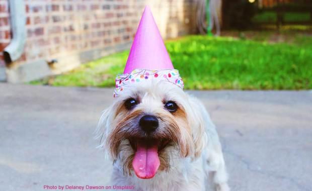 BirthdayPartyDJBryanVeroBeach