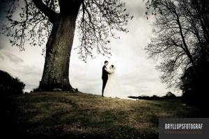 Bryllup på Sejerø