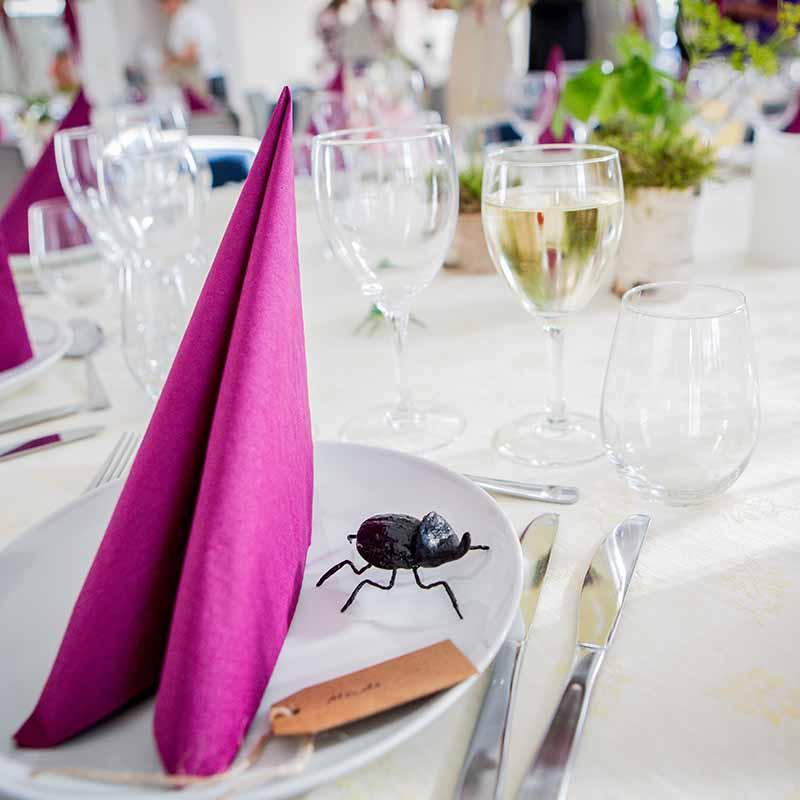 Når I booker en professionel bryllupsfotograf til jeres bryllup, vil der for det meste være et møde hurtigt efter, at I har booket fotografen.