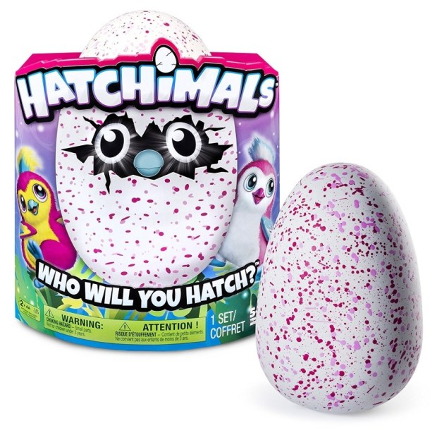 Hatchimals Spin Master