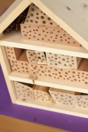 Insektenhotel basteln mit der BSG