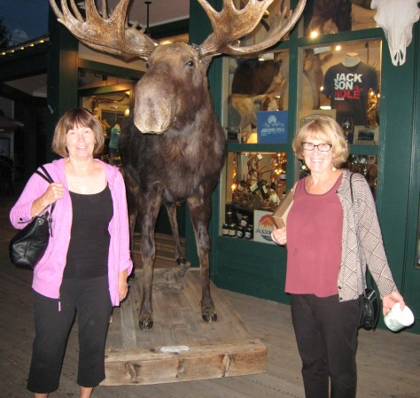 Connie (local journalist and family friend) and Karen Stewart in front of random stuffed moose in downtown Jackson Hole.